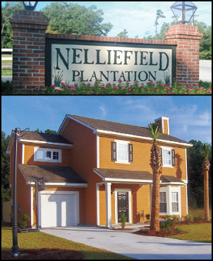 a home in Nelliefield Plantation on Daniel Island